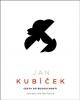 Jan Kubíček Cesta do budoucnosti