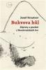 Bukvova hůl: Zápisky a pověsti z Novohradských hor